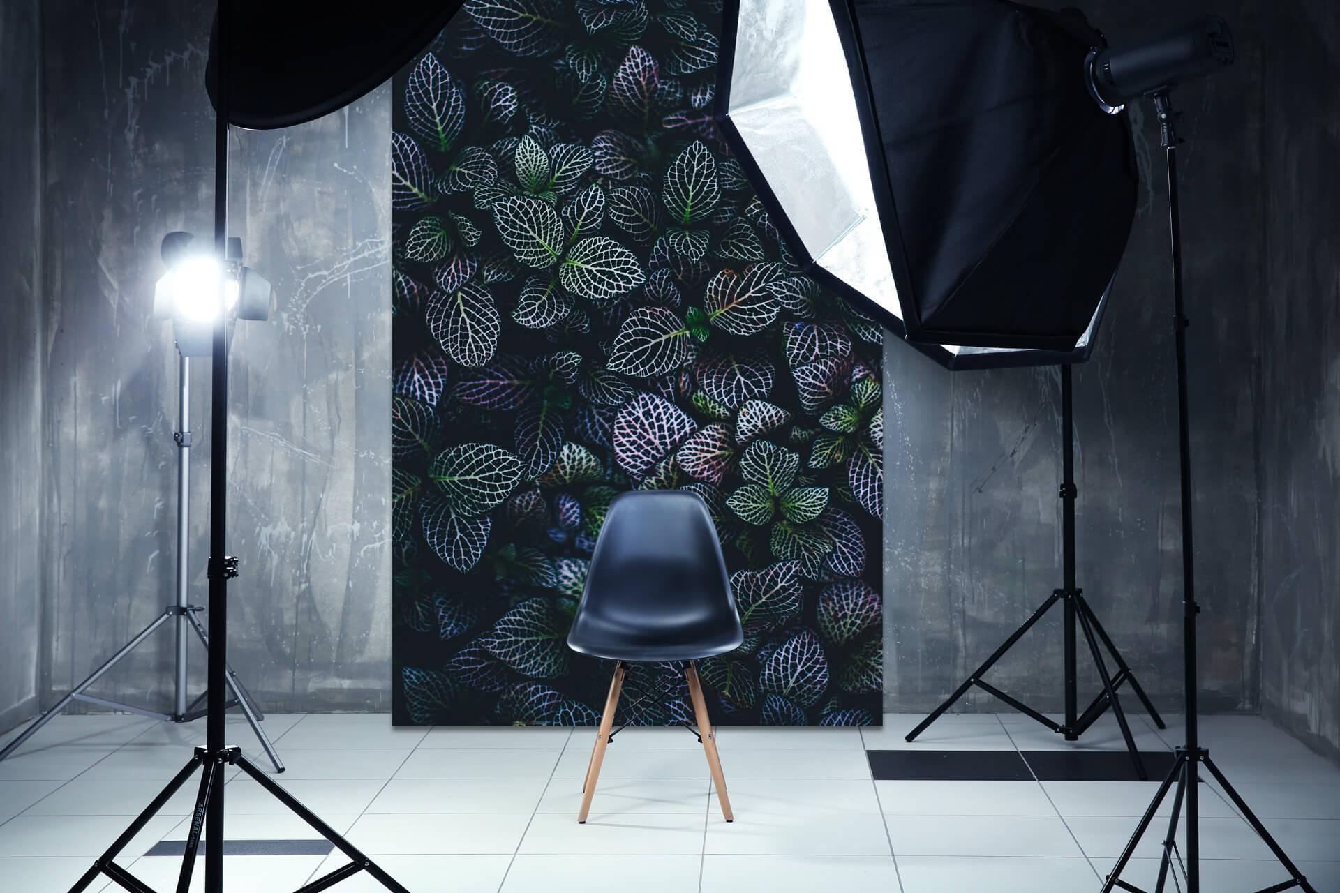 Studio fotograficzne z indywidualnym drukowanym tłem